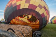 Photo of a Hot Air Balloon being inflated at the Temecula Wine Festival