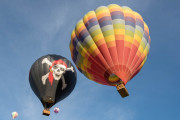 Photo of Balloons at the Temecula Wine Festival