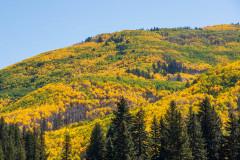 Photo of mountain color on the road to Telluride, CO
