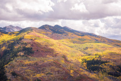Photo of Mountain Color along Hwy 133