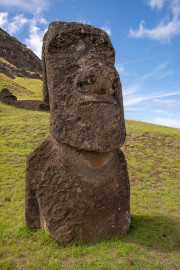 Photo of a buried Moai at the Quarry.