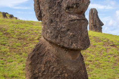 Photo of Buried Moai at the Quarry on Easter Island.