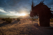 Photo of the Dragon at Sunset.  Borrego Springs, CA