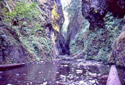 Photo of a small gorge along the Columbia River Scenic Highway in Oregon.  this was taken from a 35mm slide over 40 years ago.