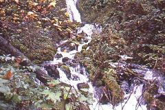 Photo of a Waterfall along the Columbia Gorge in Oregon.  This is from a 35mm slide and taken over 40 years ago.