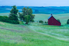 Photo of the Saltbox Barn in the Palouse very early morning