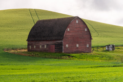 Photo of a Barn in the Palouse early morning