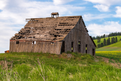 Photo of an Old Abandoned Barn in the Palouse