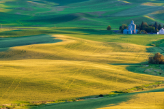 Photo of the Palouse early morning