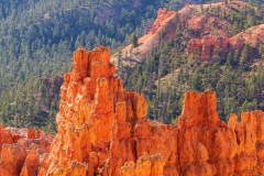 Photo of Bryce Canyon at Sunrise.