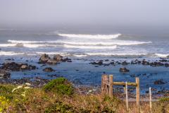 Photo taken along the Lost Coast of California