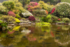 Photo of the Pond at Shore Acres on the Oregon Coast