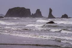 Photo of Bandon Beach in the Fog