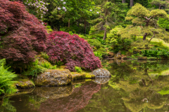 Photo of the Pond at Bloedel Reserve on Bainbridge Island
